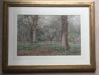 Wilmot Pilsbury Watercolour - Woodland Scene (2 of 3)