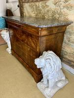 19th Century Burr Walnut Marble Top Commode (6 of 8)