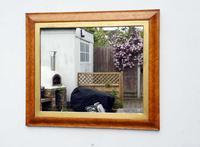 Victorian Birds Eye Maple Overmantle Mirror (10 of 13)