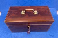 Georgian Mahogany Twin Canister Caddy (2 of 14)