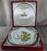 Stafford Flowers Pattern Plate by Spode (2 of 4)