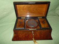 Large Burr Walnut Bell Style Tea Caddy - Original Lids c.1870 (6 of 11)