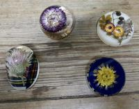 Collection of 4 Dried Flower Paper Weights (2 of 5)