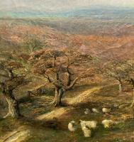 Large Superb Original 19thc West Sussex 'Tilgate Forest' Landscape Oil Painting (5 of 12)