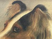 Pair of Scottish 19th Century Oil Paintings Rough Collie Dog Portraits After George Washington Brownlow (13 of 49)