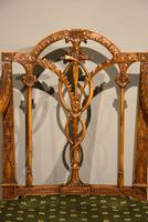 19th Century Carved Armchair in Satin Birch & Satinwood (6 of 7)