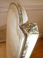 Pair of 19th Century Bergere / Cane Arnchairs (3 of 6)