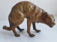 Early Large 20th Century Cold Painted Bronze of a Wild Dog (7 of 8)