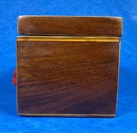18th Century Mahogany  Shell Inlaid Tea Caddy (14 of 18)