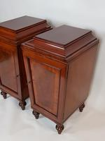 Pair of Regency Mahogany Pedestal Cabinets (5 of 8)