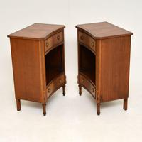 Pair of Antique Regency Style Mahogany Bedside Cabinets (8 of 10)