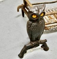 Quirky Model Owl Iron Andirons with Grate (4 of 7)