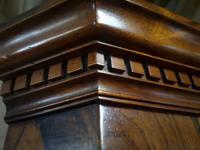 Mahogany Corner Cabinet in the Georgian Style (9 of 10)