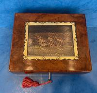Victorian Walnut Display Box (4 of 11)