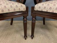Excellent Pair of Regency Mahogany Scroll Armchairs (4 of 17)