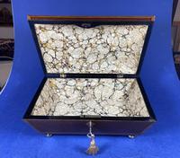 Regency Sarcophagus Mahogany Box with Shell Inlay. (2 of 12)
