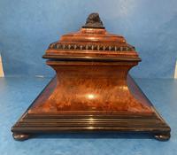 Victorian Burr Cedar & Ebony Shaped Tea Caddy (4 of 20)