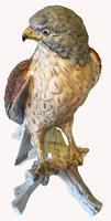 A Porcelain Falcon Eagle Hawk by Goebel of Germany (5 of 7)