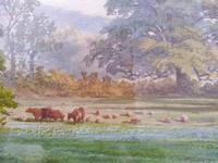 Path Through The Pasture (2 of 5)