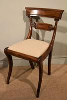Pair of Regency Mahogany Side Chairs (4 of 7)