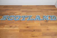 "12 Vintage 1960s Shop Sign Letters ""Scotland"" (2 of 6)"