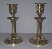 Pair of 19th Century Small Size Brass Candlesticks