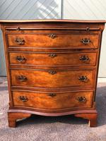 Antique Burr Walnut Chest Drawers (4 of 11)
