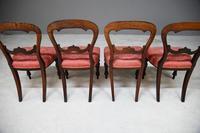 4 Mahogany Balloon Back Dining Chairs (2 of 12)