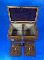 Georgian Burr Yew Twin Section Tea Caddy (13 of 13)