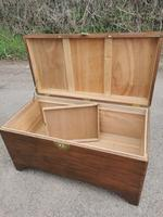 Large Camphor Wood Trunk (10 of 13)