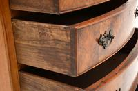 Antique Burr Walnut Bow Front Chest of Drawers (7 of 9)