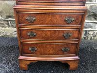 Antique Burr Walnut Chest of Drawers (4 of 8)