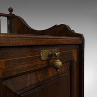 Antique Purdonium, English, Rosewood, Fireside, Cabinet, Edwardian c.1910 (5 of 11)
