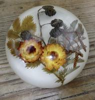 Collection of 4 Dried Flower Paper Weights (4 of 5)