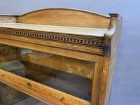 Globe Wernicke Type Bookcase by Lebus (2 of 14)