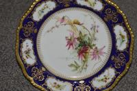 1904 Royal Worcester Plate with a Spray of Hand Painted Flowers & Snail (2 of 4)