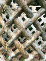 Pair of Fine Antique Edwardian Garden Cast Iron Lattice Urn Planters on 3 Lion Feet (6 of 12)