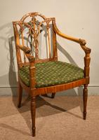 19th Century Carved Armchair in Satin Birch & Satinwood (2 of 7)