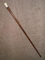 Antique Rosewood Walking Stick / Cane with Pommel Handle Top (2 of 11)