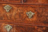 Early 18th Century Burr Walnut Chest on Stand (11 of 11)