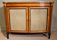 George III Satinwood Chiffonier Side Cabinet (7 of 9)
