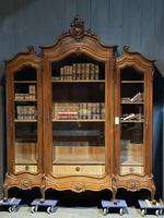 Wonderful French Walnut Bookcase or Cabinet (18 of 25)