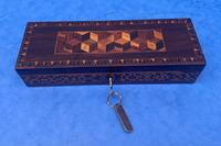 William IV Rosewood Glove Box with Stick Ware & Tunbridge Ware (2 of 14)