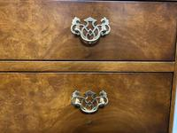 Queen Anne Burr Walnut Chest of 4 Drawers (5 of 12)