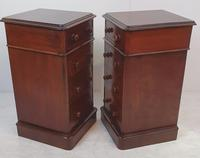 Pair of 19th Century Mahogany Bedside Chests (2 of 4)