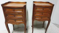 Pair of French Mahogany Bedside Chests / Cabinets (2 of 9)