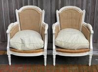 French 3 Piece Bergere Suite (2 of 26)
