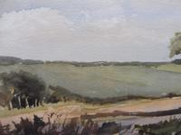 Watercolour Middlebere Heath Listed Artist Ronald Birch (6 of 10)
