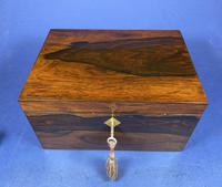 William IV Brazilian Rosewood Box (5 of 22)