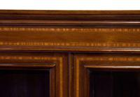 Edwardian Mahogany & Satinwood Bookcase (5 of 7)